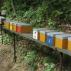 Příprava na pozdní spojování včelstev